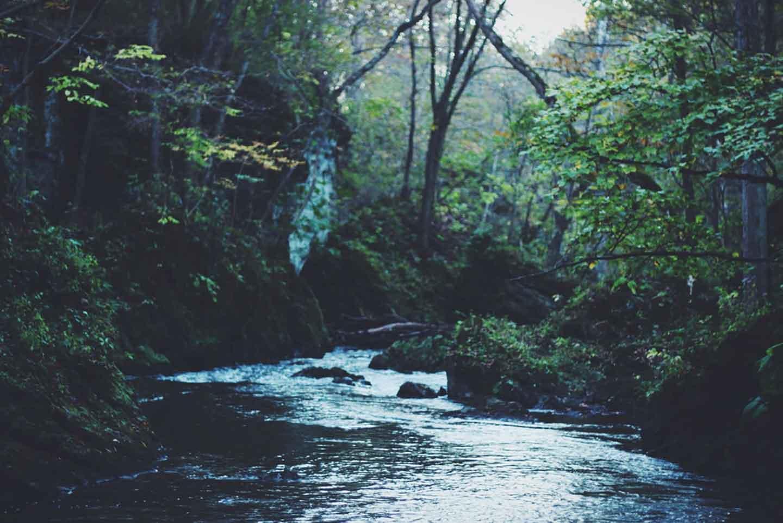 安曇川の流れ